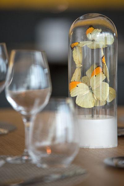 02-papillon-restaurant-mia-Sophie-Petit
